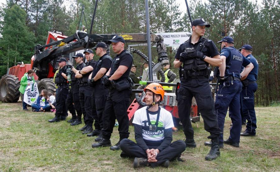 Puszcza Białowieska. Interwencja policji wobec ekologów