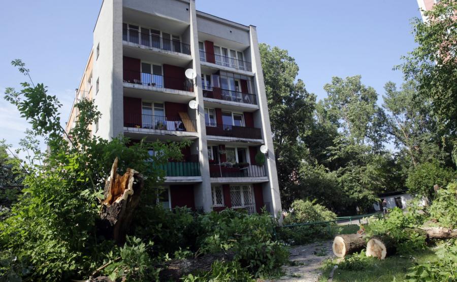 Zniszczenia po burzy w Warszawie