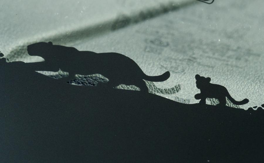 Nie zabrakło też drobnych niespodzianek - jedną z nich jest wizerunek dużego i małego jaguara na dolnej krawędzi szyby  E-PACE