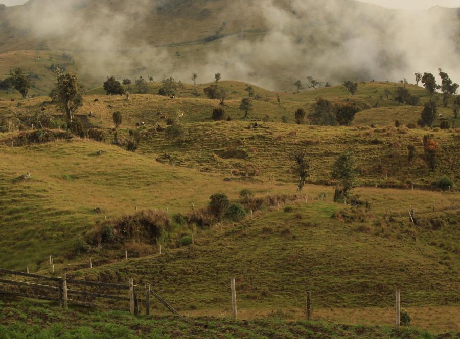 Kolumbia - Laguna del Otun