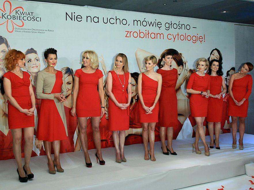 Gwiazdy na gali finałowej ogólnopolskiej kampani \