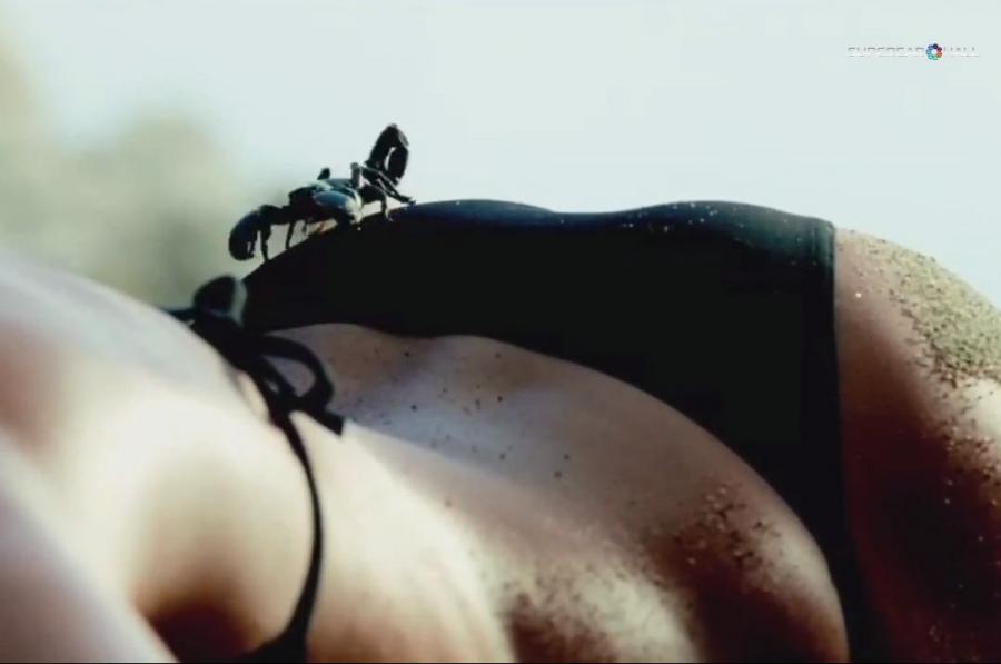 Catrinel Menghia i skorpion