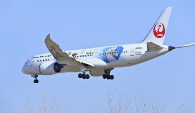 Dreamliner w barwach japońskiej linii lotniczej