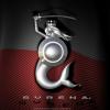 Logo AK Syrena