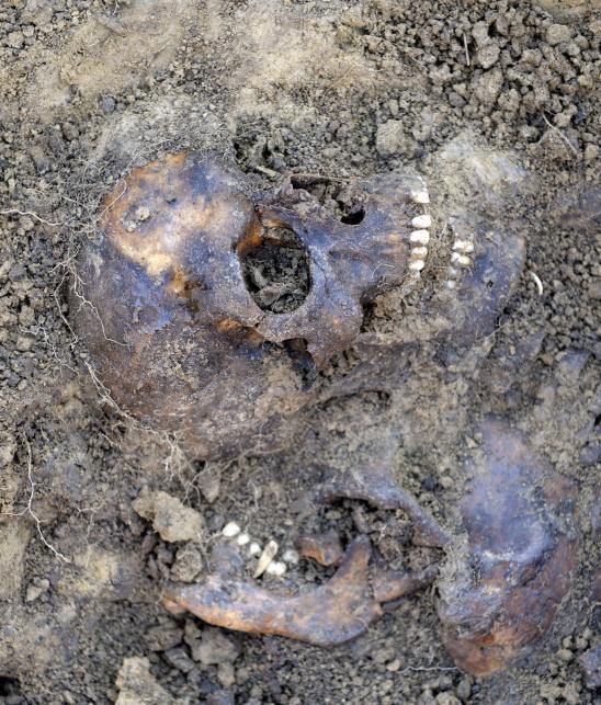Pierwsze szczątki znalezione w zbiorowych mogiłach w rejonie dawnego obozu jenieckiego z okresu II wojny światowej na obrzeżach Przemyśla