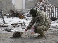 Ruiny, spalone wraki czołgów... Co zostało po walkach na Ukrainie? ZDJĘCIA