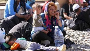 Uchodźcy na granicy serbsko-chorwackiej