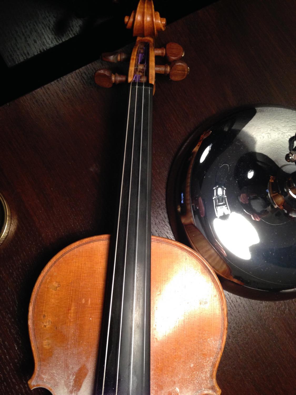 Zagubione skrzypce