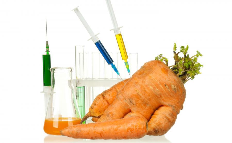 Żywność genetycznie zmodyfikowana