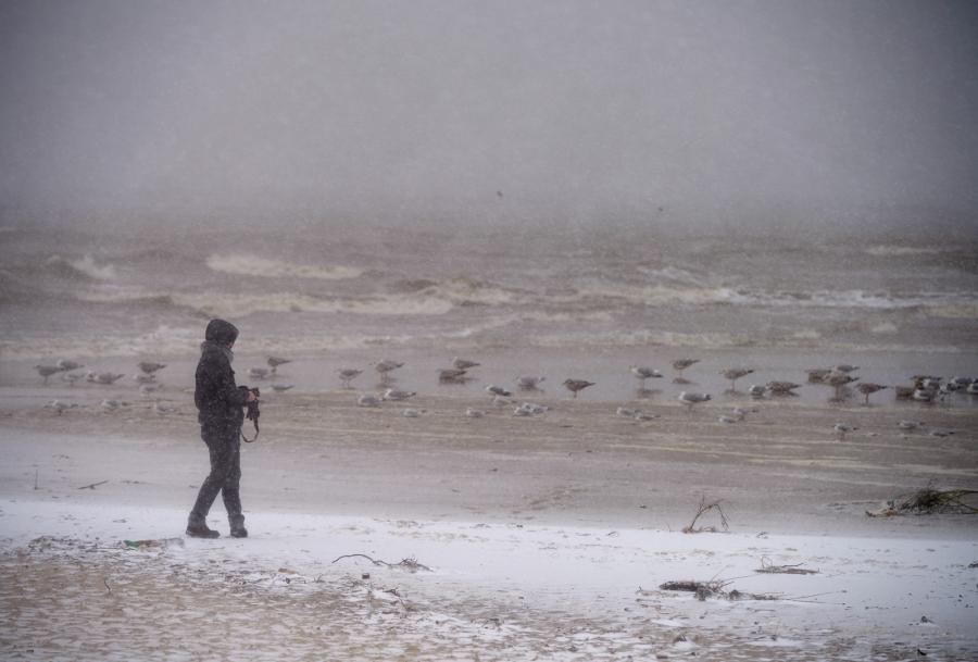 Spacerowicz na plaży przy molo w Sopocie